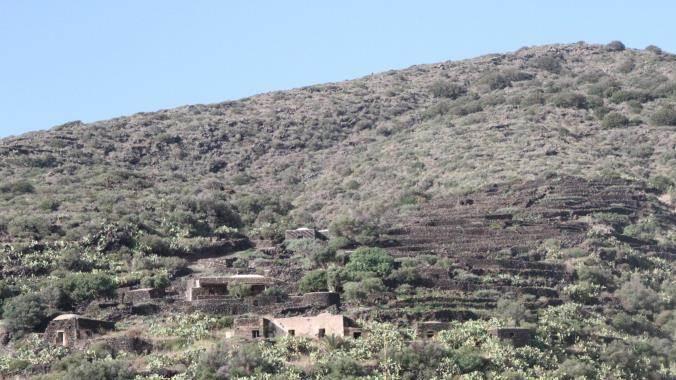 Azienda Agricola Cimillia
